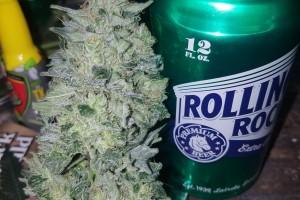 OG Kush Marijuana Strain image
