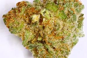 Pennywise Marijuana Strain image