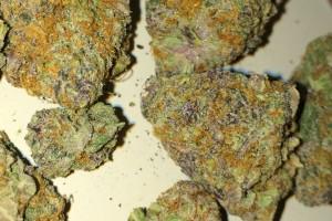 Platinum Girl Scout Cookies Marijuana Strain image