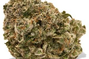 Raspberry Cough Marijuana Strain image
