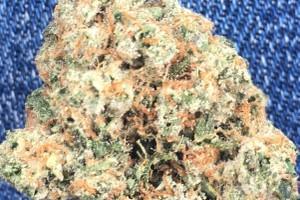 Sour OG Marijuana Strain image