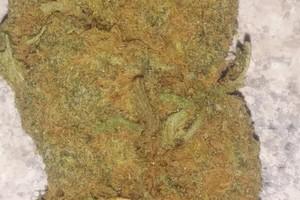 Tangie Marijuana Strain image