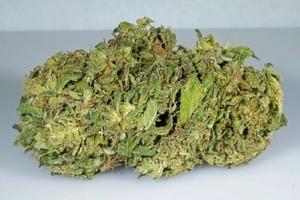 THC Bomb Marijuana Strain image