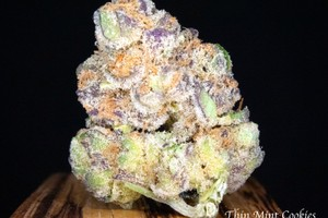 Thin Mint Girl Scout Cookies Marijuana Strain image