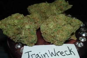 Trainwreck Marijuana Strain image