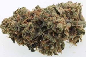 Tres Dawg Marijuana Strain image