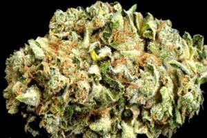 VOTS AZ Super Sour OG Marijuana Strain image