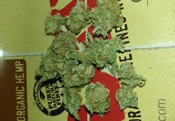 Fruity Pebbles | Marijuana Strain Reviews | AllBud
