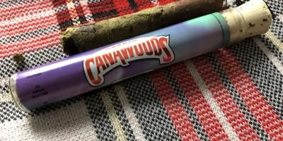 Cannawoods Novelty Blunt - Northern Lights 2 g Flower - 0.25 g Shatter - 0.25 g Kief Blunt