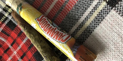 Cannawoods Novelty Blunt (Many Strains Available) 2 g Flower - 0.25 g Shatter - 0.25 Kief Blunt