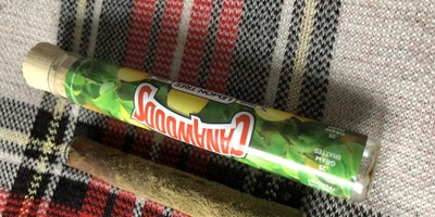 Cannawoods Novelty Blunt - Lemon Tree 2 g Flower - 0.25 g Shatter - 0.25 g Kief Blunt