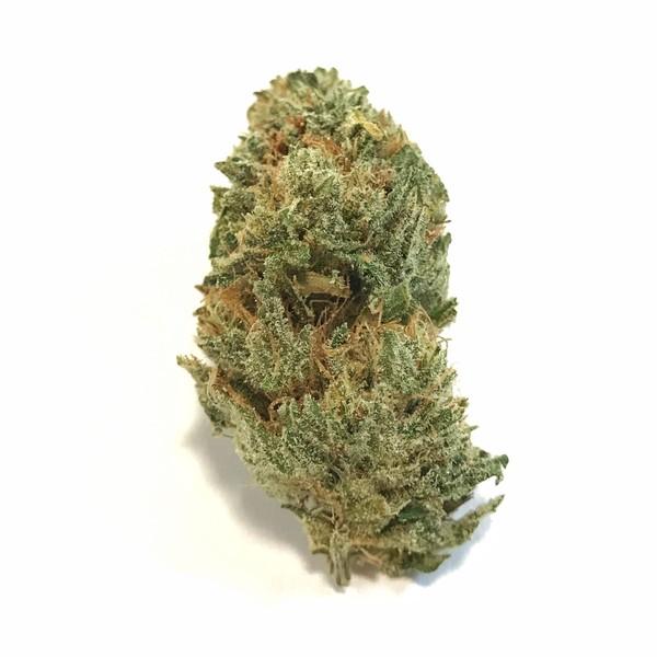 Takoma Wellness Center | Medical Marijuana Dispensary