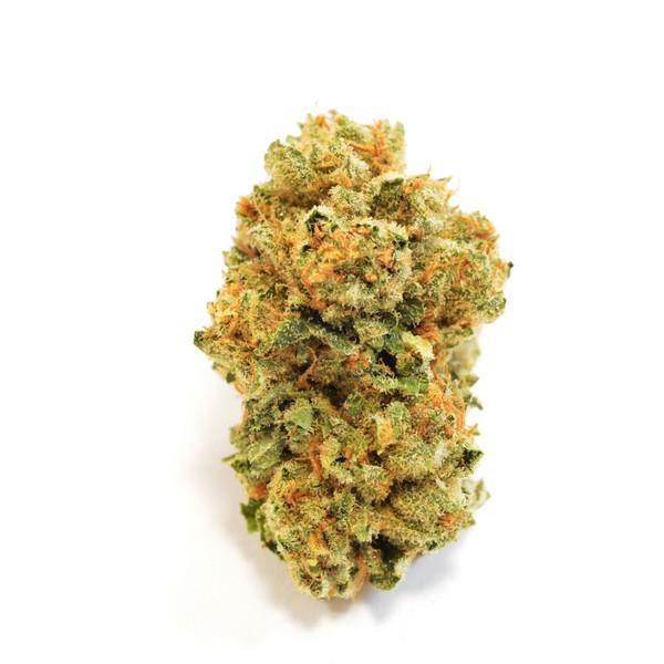Takoma Wellness Center   Medical Marijuana Dispensary   Washington