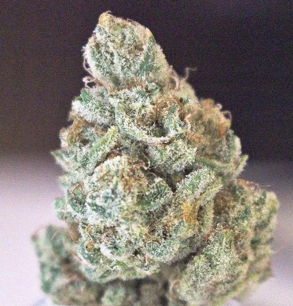 Lemon Cake Marijuana Strain Reviews Allbud